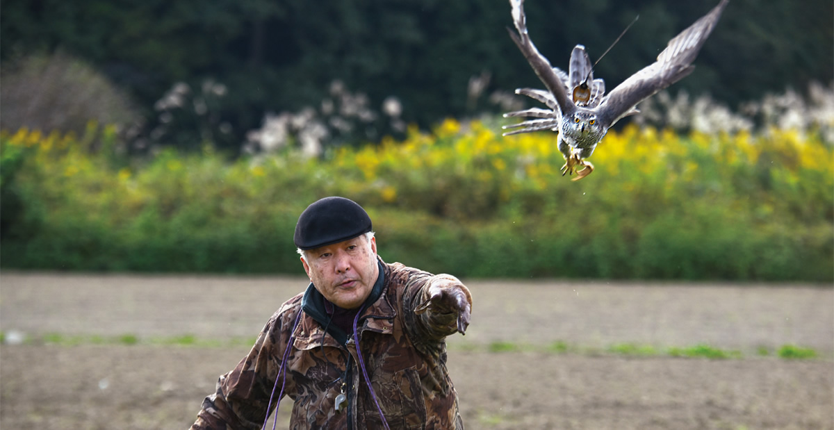 Rites of Flight: Falconry in Japan